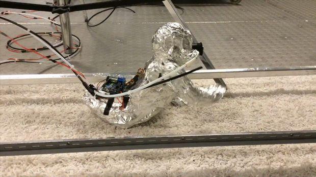 robot-crawling 2